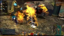 Guild Wars 2 - Donjons et Events - Quaggan veut être pirate