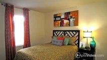 Bancroft Hall Apartments in Virginia Beach, VA - ForRent.com