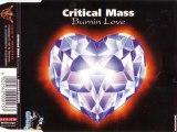 CRITICAL MASS - Burnin love (happy radio edit)