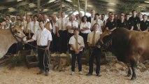 national Parthenais : Festival de l'élevage et de la gastronomie 2013 à Parthenay