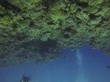 Australie- Queensland: Plongé sur la Grande Barrière de Corail