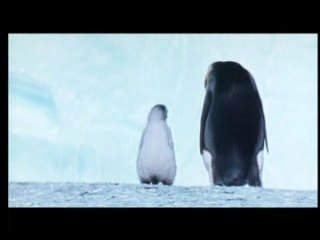 'March of the Penguins' News Report
