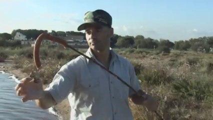 Parodie Man Vs Wild - Episode 2