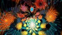Relaxing Meditation Brainwave Binaural Beats Free Music