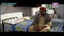 Mehmoodabad ki Malkain, Episode 195, 30-12-13