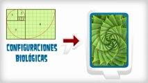 Educación Matemática 'La Matemática en la Naturaleza'