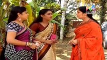 Pattu Saree 06 January 2014 , Pattu Saree 06-01-2014, Pattu Saree Latest Episode P1