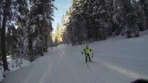 Technique ski de fond skating