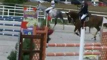 Superbe cheval a vendre par Baloubet du Rouet