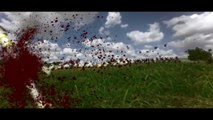 Mount & Blade : Warband - Napoleonic Wars - Launch Trailer