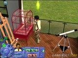 Les Sims 2 : Animaux & Cie - Les parents pauvres de l'add-on