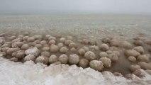 Le lac Michigan transformé en un lac de boules de glace