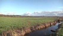 Balade sur les chemins des marais de Carentan [TéVi] 10-01-14
