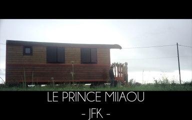 Le Prince Miiaou - JFK (extrait 4/6 de l'album 'where is the queen?') Teaser #4