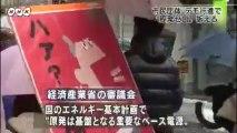 20140111デモ行進で原発ゼロ訴える 福井