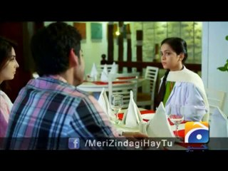 Meri Zindagi Hai Tu - Episode 16 - January 10, 2014