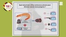 Taous SARAOUI- Biotechnologie alimentaire « Mécanismes d'interactions entre une bactérie bioprotectrice d'intérêt pour la biopréservation des produits de la mer Lactococcus piscium CNCM I-4031 et la bactérie pathogène Listeria monocytogenes »