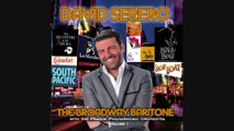 HOW LONG MUST THIS GO ON? - THE BROADWAY BARITONE - DAVID SERERO