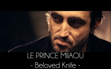 Le Prince Miiaou - Beloved Knife (extrait 3/6 de l'album 'where is the queen?') Teaser #3