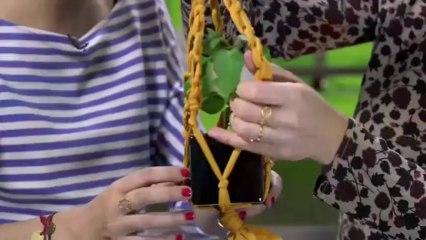 Déco Brico Jardinage : Fabriquer un porte plante avec un collant troué