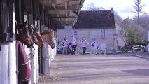 Les Drakkars en route pour les Jeux Equestres Mondiaux 2014