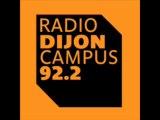 Présentation de la LPO Côte-d'Or par Christian Lanaud (vice-président LPO 21) - RadioDijon Campus - 17 janvier 2014