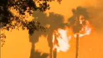 California wildfire: Homes burned, thousands evacuated, three arrested