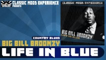 Big Bill Broonzy - Worrying You Off My Mind (1932)