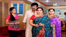Pattu Saree 17 January 2014 , Pattu Saree 17-01-2014, Pattu Saree Latest Episode P1