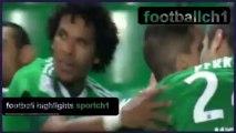 St. Etienne 2-0 Lille - St. Etienne vs Lilla 2-0 All Goals Highlights France 17/01/2014