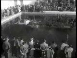 """""""Londra: da tutto il mondo  plebiscito di doni e di auguri per gli 80 anni di Churchill. Roma: divertente  per Pidgeon   tornare all'antico  dopo di aver galoppato sulla sommità del mondo. New York: tutti di doppio uso gli oggetti esposti alla Mostra.."""