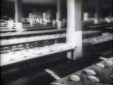 Immigration Through Ellis Island - Award Winning Documentary Video Film