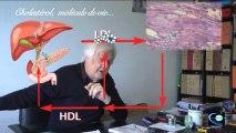 Cholestérol molécule de vie 1/2 (entretien avec le Pr Philippe Even 1ère partie)