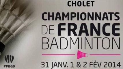 Championnats de France de Badminton 2014