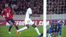 But Abdoulaye DOUCOURE (41ème) - LOSC Lille - Stade Rennais FC - (1-1) - 24/01/14 - (LOSC-SRFC)
