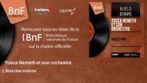 Yosca Nemeth et son orchestre - L'âme des violons