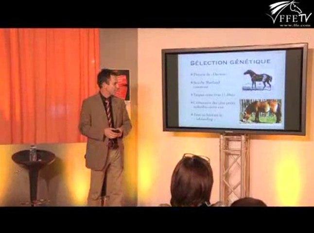 Les chevaux miniatures avec leurs particularités