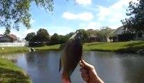 Un gars pêche à l'Arbalète... taré!