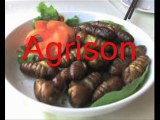 agrison on tagged