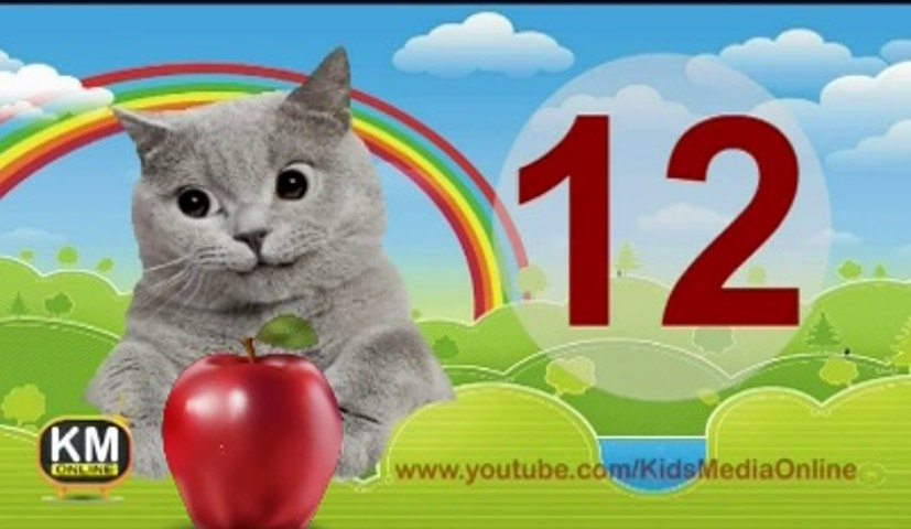 Count 1 to 20 Learning For Toddlers and Preschool Children