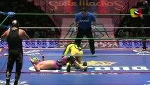 Blue Panther, Máximo, Super Porky vs Dragón Rojo Jr., Mr. Niebla, Negro Casas
