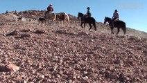 Promenade à cheval, Désert d'Atacama - Voyage au Chili