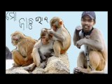 orissa cricket ranji cricketer natraj behera orissa sports (1)