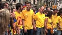 """TV3 - """"Alguna pregunta més? APM"""" - L'""""Homo APM"""", a la Via Catalana"""