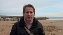 Ecologistas acusan de complicidad al Puerto de Gijón por muerte de aves protegidas