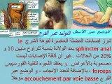 Périnée et grosseesse - Dr AMINE Abdelkader -Casablanca