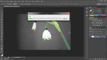 Photoshop CS6: New Iris Blur Filter - Tutorial