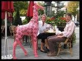 Les dernières girafes d'Yves Henry