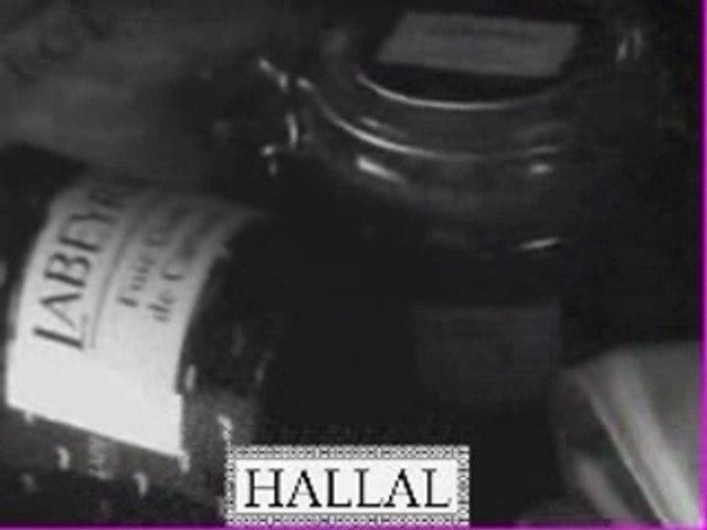 Labeyrie_hallal