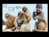 natraj behera orissa cricket team (9)